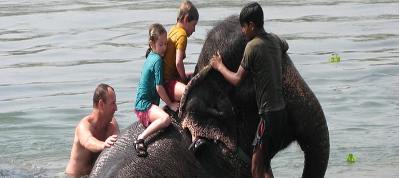 Chitwan Jungle Safari Tour 9 Days.